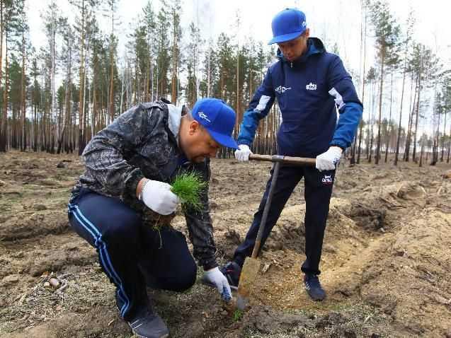 В Челябинской области продолжится создание Сада Памяти