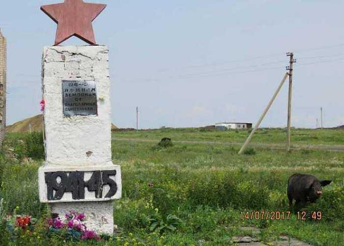 ВЧелябинской области назаброшенном мемориале ВОВ пасли свиней